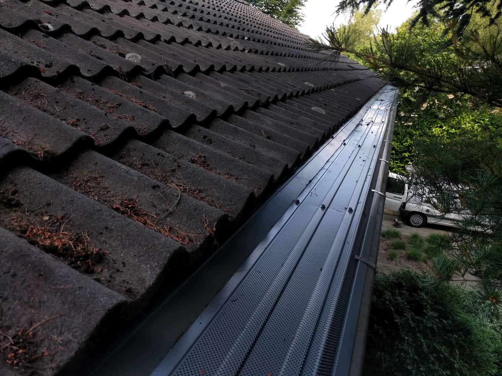dakgootbescherming-tegen-dennenaalden-na